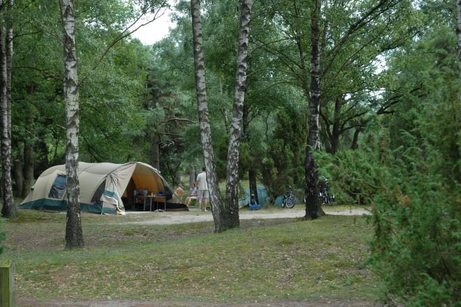 Camping Lutterzand